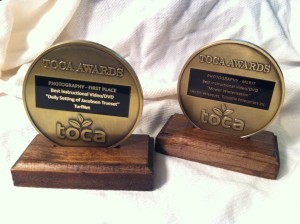 Hector's awards for his videos